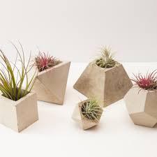 concrete planters beautiful concrete planters handmade in england by okconcrete