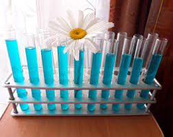Test Tube Vases Wholesale Science Tools Laboratory Glassware Clear Glass Tubes Lab