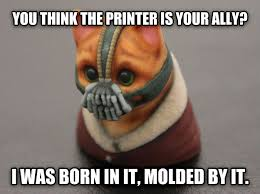 Bane Meme Internet - livememe com 3d bane cat