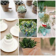 wonderful bride bouquets with succulents