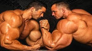 priest vs roelly winklaar who has the best arms