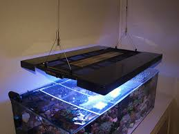 T5 Light Fixtures For Sale by Lets See Those Led With T5 Supplements Reef2reef Saltwater And