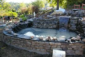 triyae com u003d raised garden pond design ideas various design