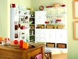 idea kitchen kitchen pantry designs beautifully idea kitchen pantry designs