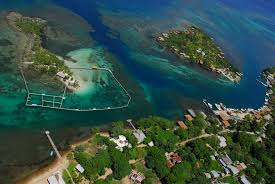 beach resort dolphin beach resort 4900 gulf blvd