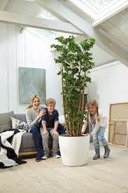 indoor planters in matt finish with wheels online at potstore co uk