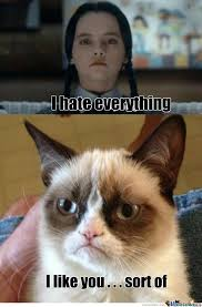 Wednesday Addams Meme - wednesday addams meets grumpy cat by ouo meme center