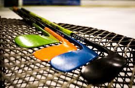 raven hockey inc