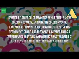 Flowers Colors Meanings - what is the meaning of lavender flowers youtube