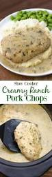 slow cooker pork chops and onions recipe slow cooker pork