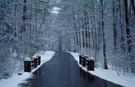 winter weather closes callaway gardens