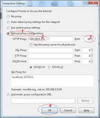 firefox3jpg configure proxy setting for your browser wiki for proxy all