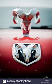 dodge ram ornament on car stock photo royalty free image