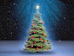 imagen para navidad chida imagen chida para navidad imagen chida feliz banco de imagenes y fotos gratis arbol de navidad parte 1