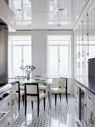 Kitchen Design New York A Black And White Kitchen By Delphine Krakoff S Plemousse