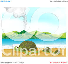 cartoon of and baby sea turtles on a beach royalty free