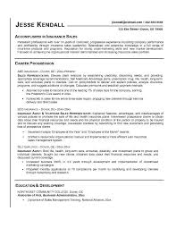 collection of solutions sample resume for sales representative