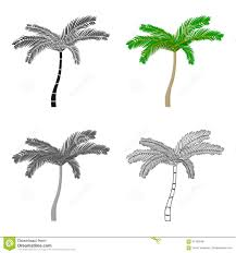 mexican fan palm icon in cartoon style isolated on white