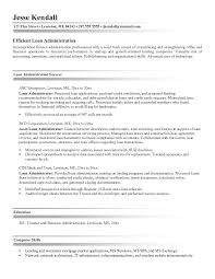 Database Administrator Resume Examples by Free Loan Administrator Resume Example