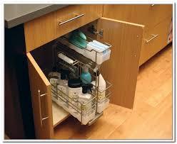Under Bathroom Sink Storage by Under Sink Storage Caddy Home Design Ideas