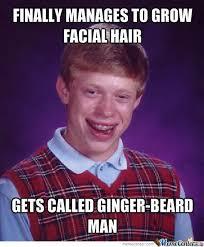 Meme Beard Guy - ginger beard man by aroc11 meme center