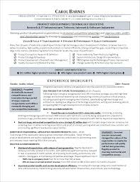Cio Resume Sample by Executive Resume Cfo