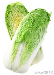 cabbage china what is napa cabbage with pictures