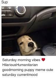 Puppy Memes - sup saturday morning vibes hilarioushumanitarian goodmorning