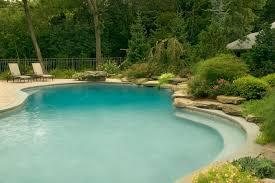 Natural Backyard Pools by Beautiful Natural Swimming Pools In New Jersey