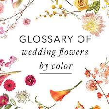 common wedding flowers wedding flowers wedding flowers and colors