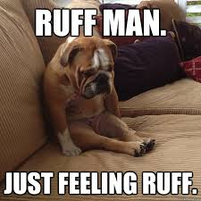 Feeling Down Meme - ruff man just feeling ruff depressed dog quickmeme