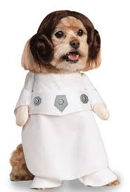 small dog witch costume amazon com star wars princess leia dog costume pet supplies