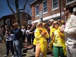 nantucket daffodil festival yankee magazine
