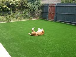 pet friendly artificial grass and fake grass fitting sussex