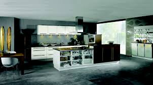 Island In Kitchen Pictures by Types Of Kitchens Alno