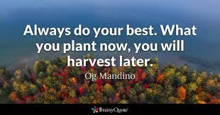 harvest quotes brainyquote