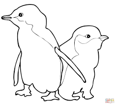 drawn penguin coloring page pencil and in color drawn penguin