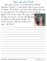penmanship practice for adults cursive worksheets for adults mediafoxstudio