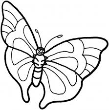 fantastical pin butterfly outline coloring page super cake on