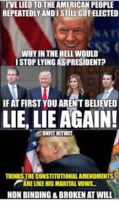 Internet Lies Meme - hitler s method when you lie make it big and keep repeating it we