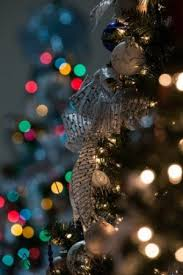how to photograph decorations
