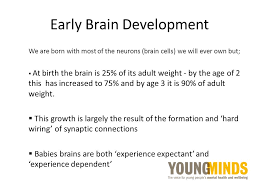 experience dependent brain growth attachment and neuroscience ppt download