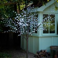 lights our of the best blossom trees outdoor