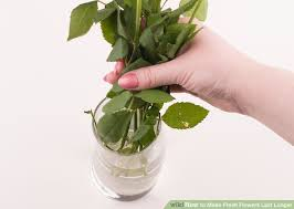 How To Revive Flowers In A Vase 4 Ways To Make Fresh Flowers Last Longer Wikihow