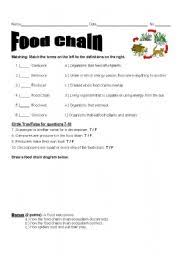english teaching worksheets the food chain