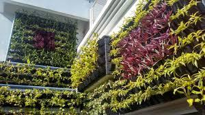 Outdoor Wall Hanging Planters by Buy Indoor U0026 Outdoor Vertical Garden Planters Bio Wall Hanging 5
