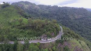 eastern and western ghats eastern ghats shola forests and tea gardens aerial footage along