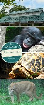 Botanical Garden Cincinnati Cincinnati Zoo Botanical Garden Family Travels On A Budget