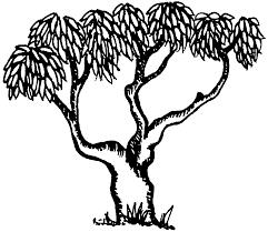 mango tree clipart black white clipartxtras