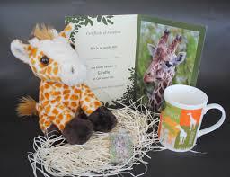 monty the meerkat colchester zoo shop